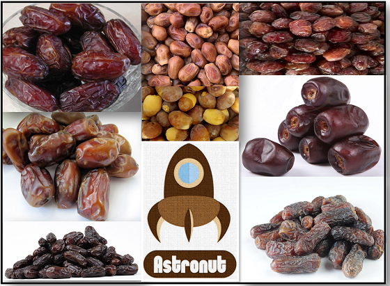 Do you Know Iranian Dates? If Not. Check it out.
